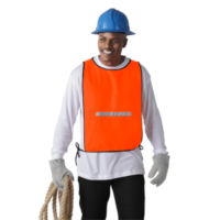 Barron Safety Bib